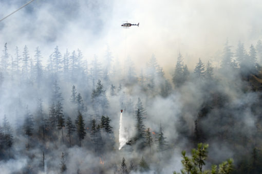 Helicopter dropping water on a forest wildfire trying to protect communities in Alberta.